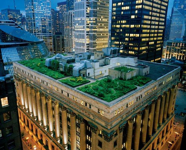 garden on Chicago city hall building, depaulunderground.wordpress.com