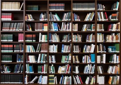 books-2463779_1920